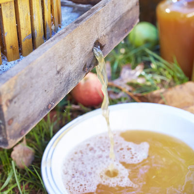 apple cider Food Styling